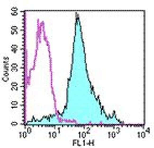 CD44 Rat anti-Human, Mouse, FITC, Clone: IM7, eBioscience™ 1 mg; FITC CD44 Rat anti-Human, Mouse, FITC, Clone: IM7, eBioscience™
