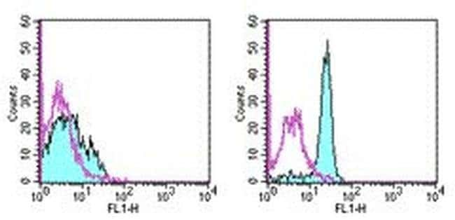 CD61 (Integrin beta 3) Armenian Hamster anti-Mouse, Rat, FITC, Clone: 2C9.G3,