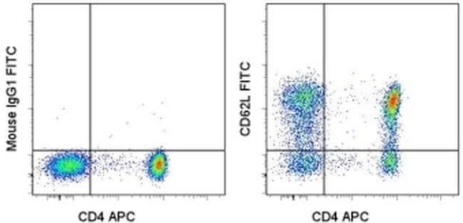 CD62L (L-Selectin) Mouse anti-Human, FITC, Clone: DREG-56 (DREG56), eBioscience