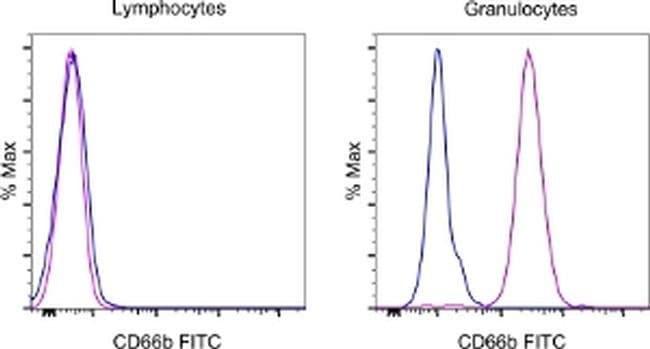 CD66b Mouse anti-Human, FITC, Clone: G10F5, eBioscience ::