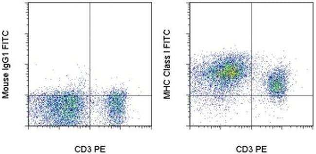 MHC Class I (RT1-A) Mouse anti-Rat, FITC, Clone: OX18, eBioscience™ 100 μg; FITC Primary Antibodies Mf to Ml
