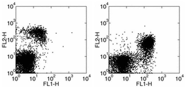 CD127 Rat anti-Mouse, FITC, Clone: A7R34, eBioscience™ 500 μg; FITC CD127 Rat anti-Mouse, FITC, Clone: A7R34, eBioscience™