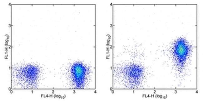 CD127 Mouse anti-Human, FITC, Clone: eBioRDR5, eBioscience ::