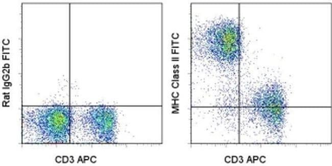 MHC Class II (I-A/I-E) Rat anti-Mouse, FITC, Clone: M5/114.15.2, eBioscience