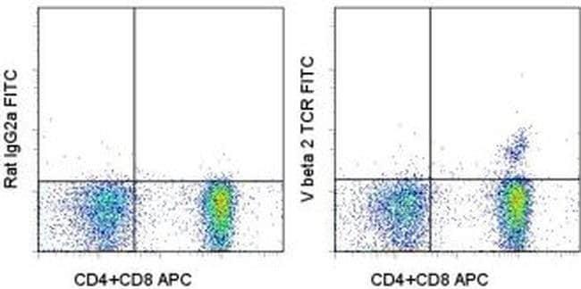 TCR V beta 2 Rat anti-Mouse, FITC, Clone: B20.6, eBioscience™ 25 μg; FITC TCR V beta 2 Rat anti-Mouse, FITC, Clone: B20.6, eBioscience™