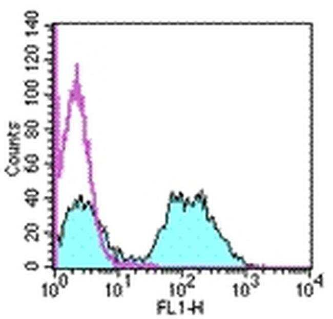 MHC Class II (I-Ek) Mouse anti-Mouse, Rat, FITC, Clone: 14-4-4S, eBioscience