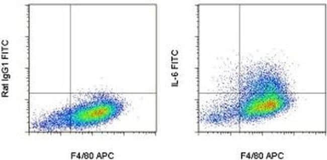 IL-6 Rat anti-Mouse, FITC, Clone: MP5-20F3, eBioscience™ 25 Tests; FITC Primary Antibodies IgY to Interferon
