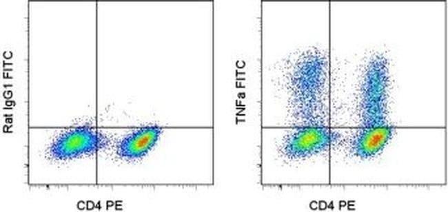 TNF alpha Rat anti-Mouse, FITC, Clone: MP6-XT22, eBioscience ::