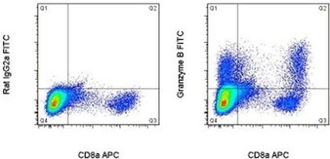 Granzyme B Rat anti-Mouse, FITC, Clone: NGZB, eBioscience™ 25 μg; FITC Granzyme B Rat anti-Mouse, FITC, Clone: NGZB, eBioscience™