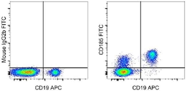 CD185 (CXCR5) Mouse anti-Human, Non-human primate, Rhesus Monkey, FITC,