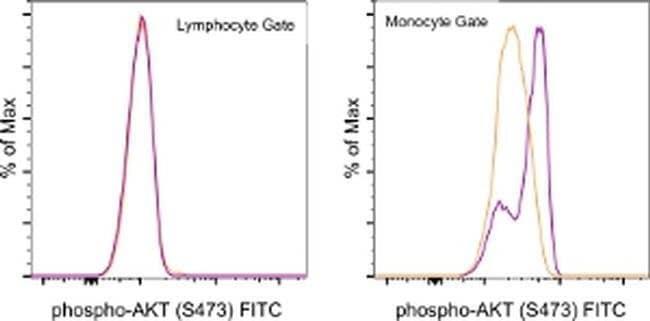 Phospho-AKT1 (Ser473) Mouse anti-Human, Mouse, FITC, Clone: SDRNR, eBioscience™ 25 Tests; FITC Phospho-AKT1 (Ser473) Mouse anti-Human, Mouse, FITC, Clone: SDRNR, eBioscience™