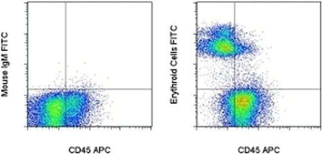 Erythroid Cells Mouse anti-Rat, FITC, Clone: HIS49, eBioscience™ 25μg; FITC Primary Antibodies Er to Ez