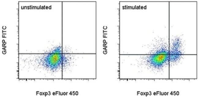 GARP Rat anti-Human, FITC, Clone: G14D9, eBioscience ::