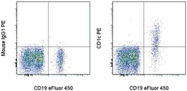 CD1c Mouse anti-Human, PE, Clone: L161, eBioscience™ 25 Tests; PE Primary Antibodies CD1 to CD5