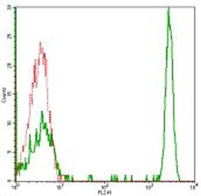 CD4 Mouse anti-Human, PE, Clone: RPA-T4, eBioscience ::