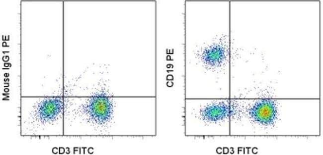CD19 Mouse anti-Human, PE, Clone: SJ25C1, eBioscience™ 25 Tests; PE CD19 Mouse anti-Human, PE, Clone: SJ25C1, eBioscience™