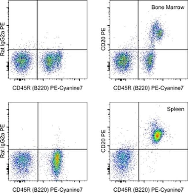 CD20, PE, clone: QCH6A7, eBioscience™ 25μg; PE CD20, PE, clone: QCH6A7, eBioscience™