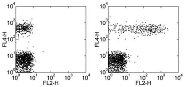 CD23 Mouse anti-Human, PE, Clone: EBVCS2, eBioscience  25 Tests; PE