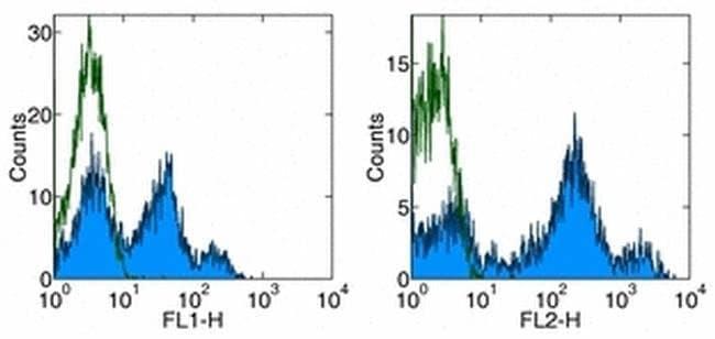 CD26 Mouse anti-Human, PE, Clone: 2A6, eBioscience ::