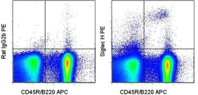 SIGLEC H Rat anti-Mouse, PE, Clone: eBio440c, eBioscience ::