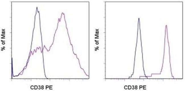CD38 Mouse anti-Human, PE, Clone: HB7, eBioscience ::