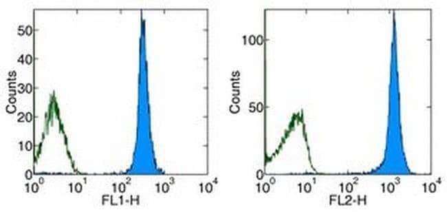 CD45.1 Mouse anti-Mouse, PE, Clone: A20, eBioscience™ 200 μg; PE CD45.1 Mouse anti-Mouse, PE, Clone: A20, eBioscience™