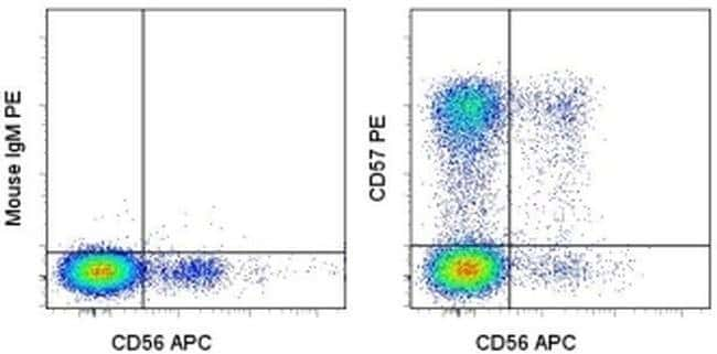 CD57 Mouse anti-Human, PE, Clone: TB01 (TBO1), eBioscience™ 100 Tests; PE CD57 Mouse anti-Human, PE, Clone: TB01 (TBO1), eBioscience™