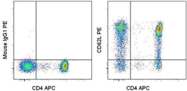 CD62L (L-Selectin) Mouse anti-Human, PE, Clone: DREG-56 (DREG56), eBioscience