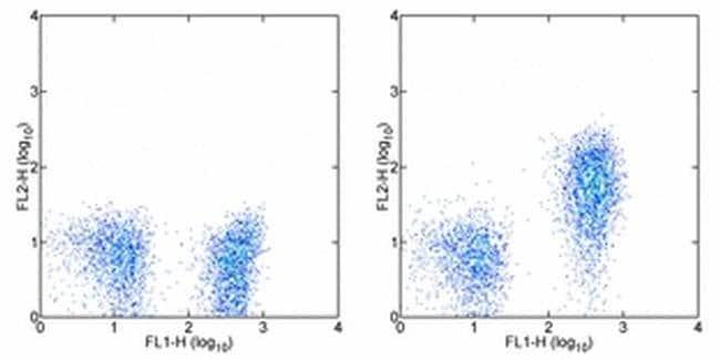 CD127 Mouse anti-Human, PE, Clone: eBioRDR5, eBioscience™ 25 Tests; PE CD127 Mouse anti-Human, PE, Clone: eBioRDR5, eBioscience™