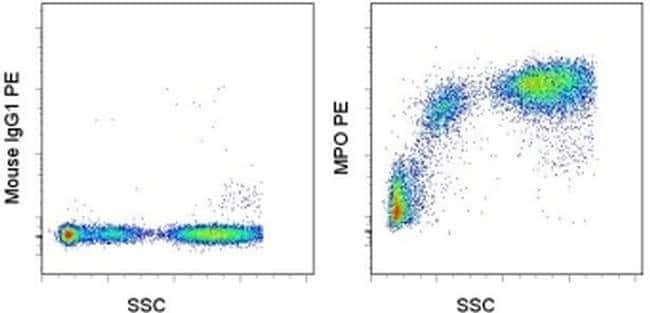 Myeloperoxidase (MPO) Mouse anti-Human, PE, Clone: MPO455-8E6, eBioscience