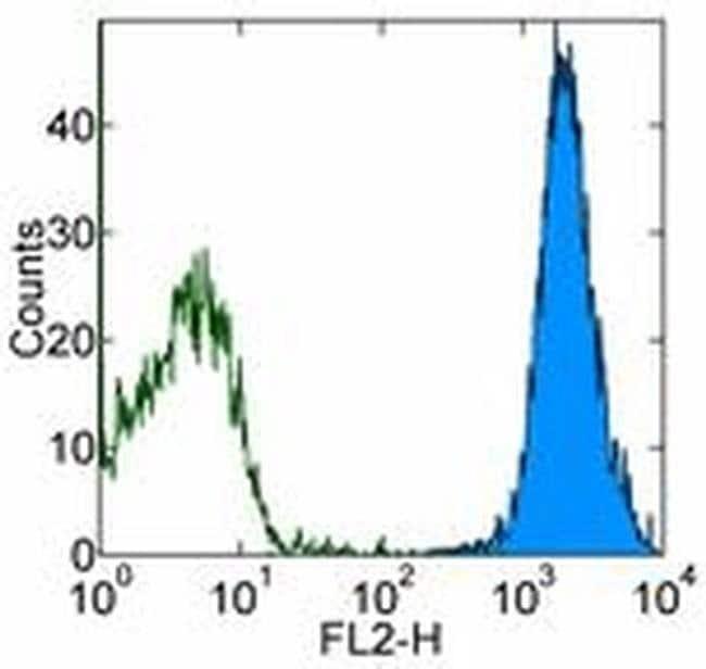 CD144 (VE-cadherin) Mouse anti-Human, PE, Clone: 16B1, eBioscience Invitrogen