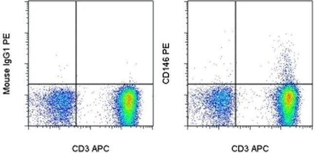 CD146 Mouse anti-Canine, Human, Mouse, Rabbit, PE, Clone: P1H12, eBioscience