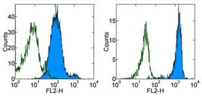 CD147 Mouse anti-Human, PE, Clone: 8D12, eBioscience ::
