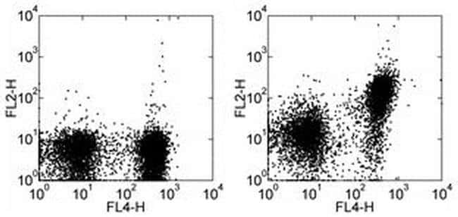CD150 Rat anti-Mouse, PE, Clone: 9D1, eBioscience ::