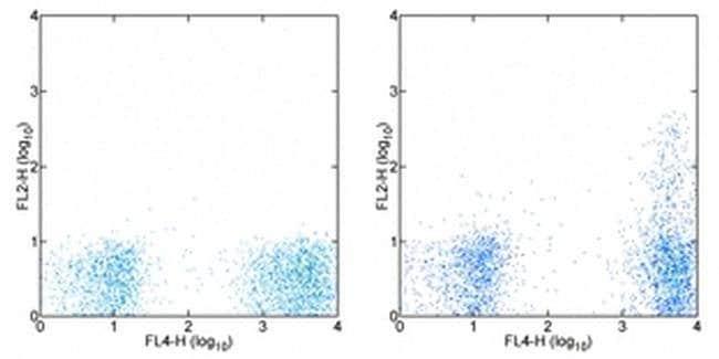 CD195 (CCR5) Mouse anti-Human, PE, Clone: eBioT21/8 (T21/8), eBioscience