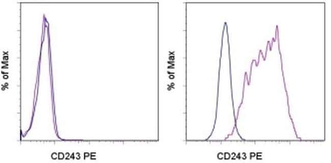 CD243 (ABCB1) Mouse anti-Human, PE, Clone: UIC2, eBioscience™ 25 Tests; PE CD243 (ABCB1) Mouse anti-Human, PE, Clone: UIC2, eBioscience™