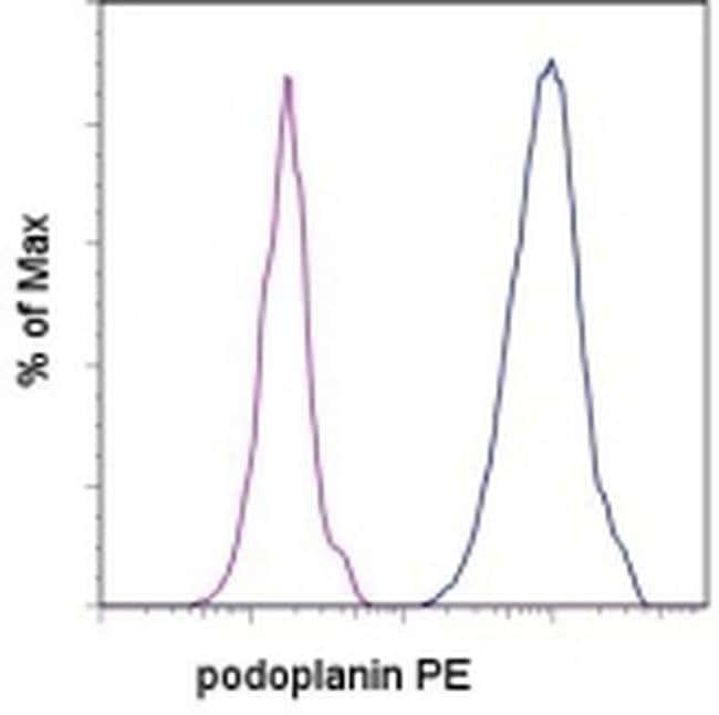 Podoplanin Syrian Hamster anti-Mouse, PE, Clone: eBio8.1.1 (8.1.1), eBioscience™ 100 μg; PE Podoplanin Syrian Hamster anti-Mouse, PE, Clone: eBio8.1.1 (8.1.1), eBioscience™