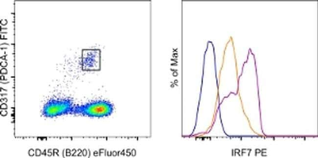 IRF7 Rat anti-Mouse, PE, Clone: MNGPKL, eBioscience™ 25 μg; PE IRF7 Rat anti-Mouse, PE, Clone: MNGPKL, eBioscience™