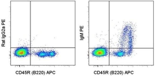 IgM Rat anti-Mouse, PE, Clone: eB121-15F9, eBioscience ::