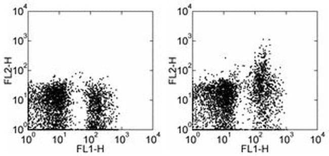 CD249 (BP-1) Rat anti-Mouse, PE, Clone: 6C3, eBioscience ::