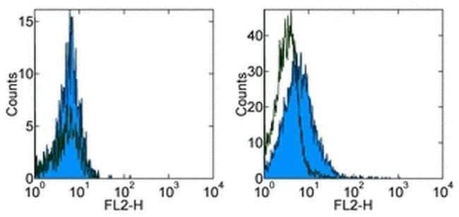CD254 (RANK Ligand) Rat anti-Mouse, PE, Clone: IK22/5, eBioscience  100