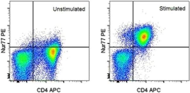 Nur77 Mouse anti-Mouse, PE, Clone: 12.14, eBioscience™ 100 μg; PE Nur77 Mouse anti-Mouse, PE, Clone: 12.14, eBioscience™