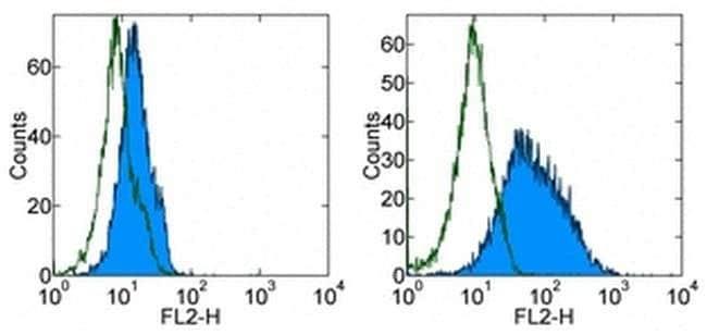 CD276 (B7-H3) Rat anti-Mouse, PE, Clone: M3.2D7, eBioscience ::