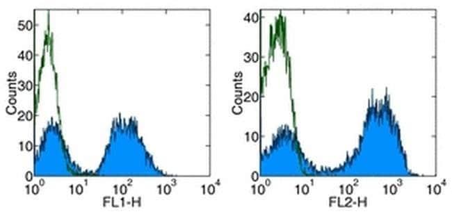 MHC Class II (I-Ek) Mouse anti-Mouse, Rat, PE, Clone: 14-4-4S, eBioscience