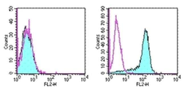 CD273 (B7-DC) Rat anti-Mouse, PE, Clone: TY25, eBioscience™ 100 μg; PE CD273 (B7-DC) Rat anti-Mouse, PE, Clone: TY25, eBioscience™