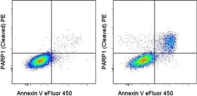 PARP1 (cleaved Asp214) Mouse anti-Human, PE, Clone: HLNC4, eBioscience