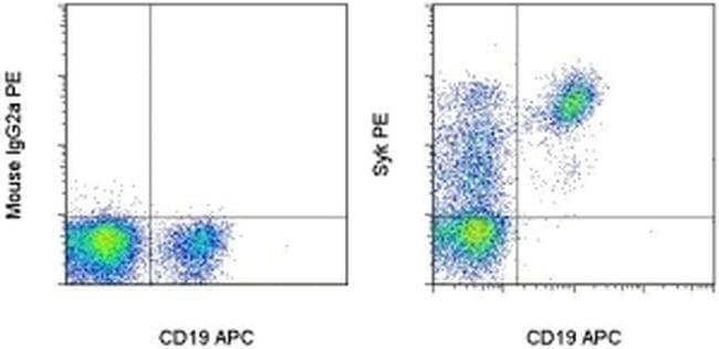 Syk Mouse anti-Human, PE, Clone: 4D10.1, eBioscience Invitrogen 100 Tests;
