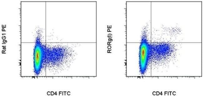 ROR gamma (t) Rat anti-Mouse, PE, Clone: B2D, eBioscience™ 100 μg; PE ROR gamma (t) Rat anti-Mouse, PE, Clone: B2D, eBioscience™