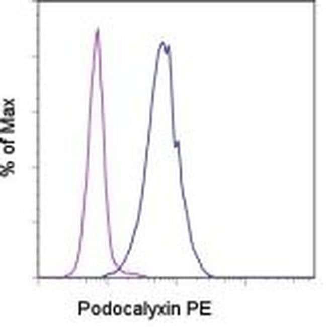 Podocalyxin Mouse anti-Human, PE, Clone: B34D1.3, eBioscience™: Primary Antibodies - Alphabetical Primary Antibodies