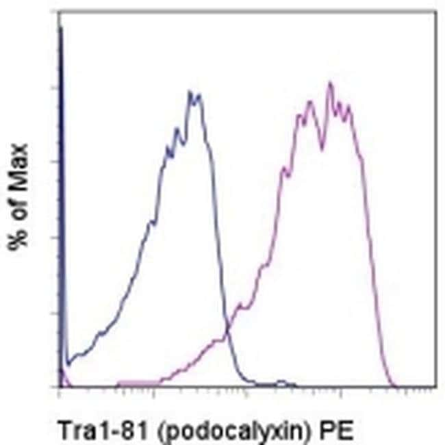 TRA-1-81 (Podocalyxin) Mouse anti-Human, PE, Clone: TRA-1-81, eBioscience™ 100 μg; PE TRA-1-81 (Podocalyxin) Mouse anti-Human, PE, Clone: TRA-1-81, eBioscience™